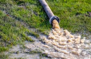 Vòi bùn